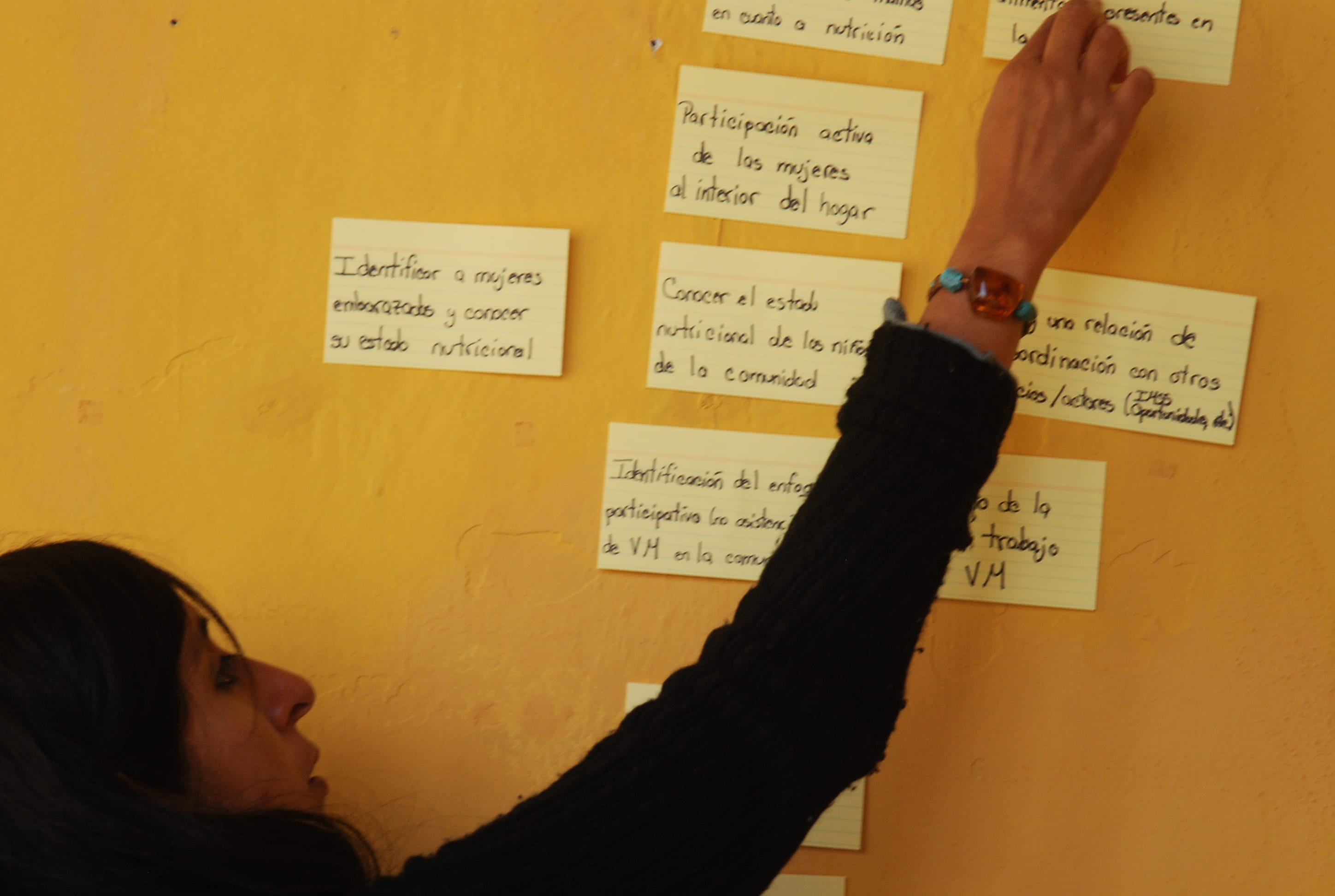 Using Theory Of Change And Theory Of Action